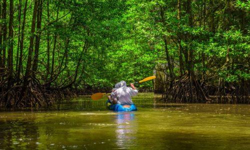 kayak phuket thailand shutterstock_1067806841 (LR)